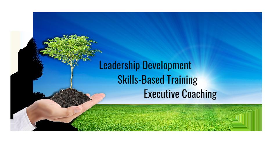 Leadership Development, Skills-Based Training and Executive Coaching